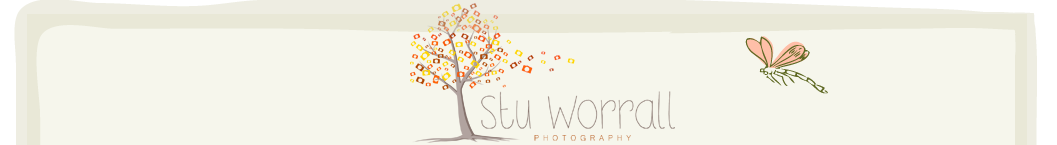 Stu Worrall Photography – Wedding Photographer Flintshire, Cheshire, Wirral, North Wales, Chester, Merseyside logo